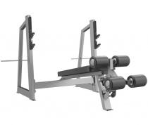 Скамья-стойка для жима под углом вниз E-3041