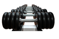 Гантельный ряд 6 кг - 24 кг (10 пар), шаг 2 кг